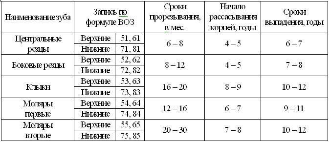 ortodontia.tablica4_.JPG