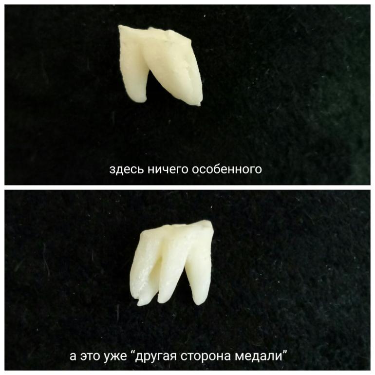 1495298390693.jpg