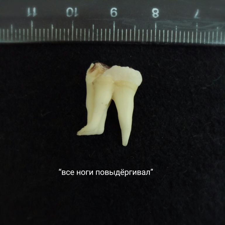 P70520-135318(1).jpg
